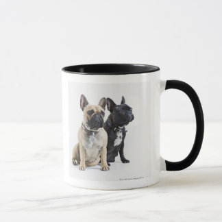 Dog training & obedience mug