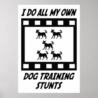 Dog Training Stunts Poster