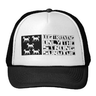 Dog Training Survive Cap