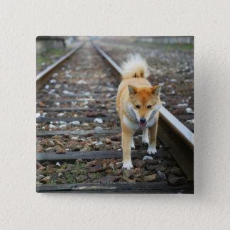Dog walking track 15 cm square badge