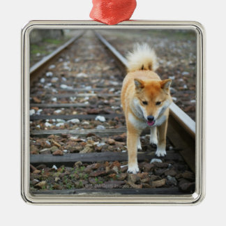 Dog walking track christmas ornament