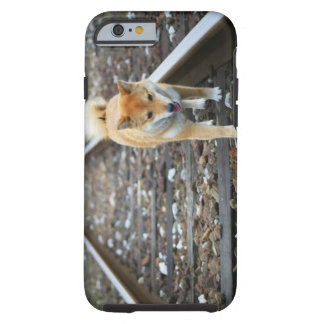 Dog walking track tough iPhone 6 case