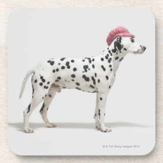 Dog wearing a hat beverage coaster