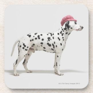 Dog wearing a hat coaster
