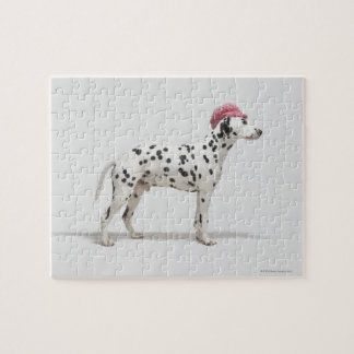 Dog wearing a hat jigsaw puzzle