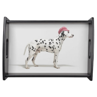 Dog wearing a hat serving tray