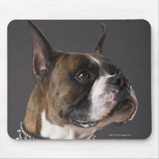 Dog wearing collar, looking away mouse mat