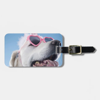 Dog wearing heart shaped classes and tu-tu luggage tag