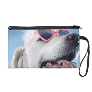 Dog wearing heart shaped classes and tu-tu wristlet