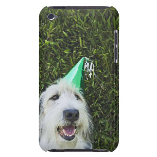Dog wearing party hat barely there iPod cases