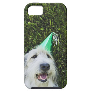 Dog wearing party hat iPhone 5 covers