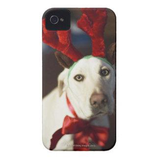 Dog wearing reindeer antlers Case-Mate iPhone 4 case