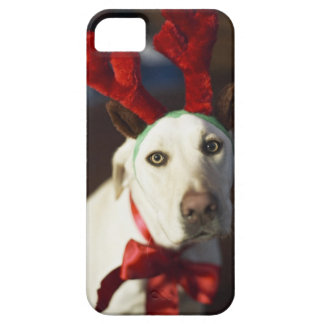 Dog wearing reindeer antlers iPhone 5 case