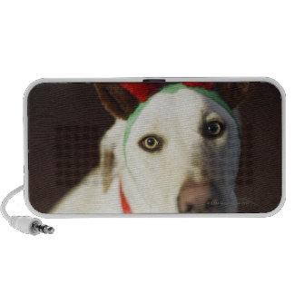 Dog wearing reindeer antlers iPod speakers