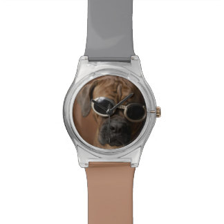 Dog wearing sunglasses 3 watch