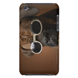 Dog wearing sunglasses barely there iPod cover