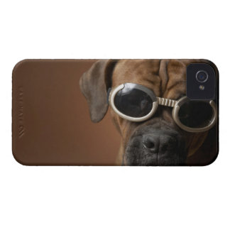 Dog wearing sunglasses iPhone 4 case