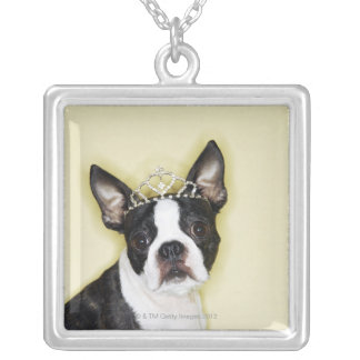 Dog wearing tiara silver plated necklace