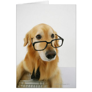 Dog wearing  tie and glasses sitting on chair in card