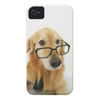 Dog wearing  tie and glasses sitting on chair in Case-Mate iPhone 4 cases