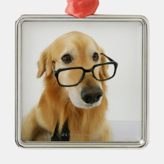 Dog wearing  tie and glasses sitting on chair in christmas ornament