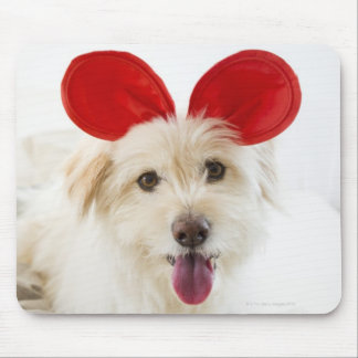Dog wearing toy ears on bed mouse pad