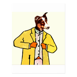 Dog with a new coat post card