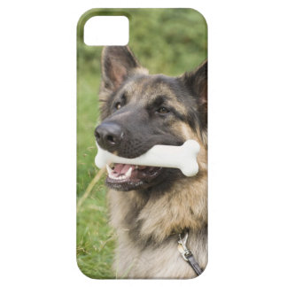 Dog with bone iPhone 5 covers