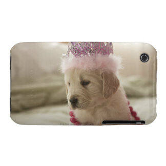 Dog with decorations on bed iPhone 3 cases