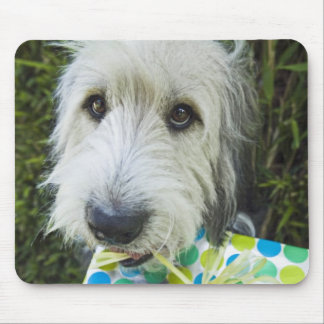 Dog with gift in mouth mouse mat