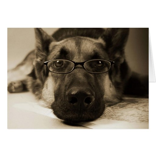 Dog with glasses greeting card