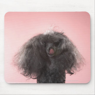 Dog with hair in front of face and tongue out mouse pad