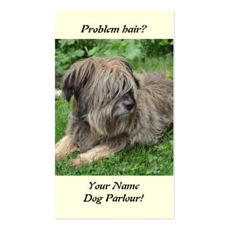 Dog with hair over it's eyes pack of standard business cards