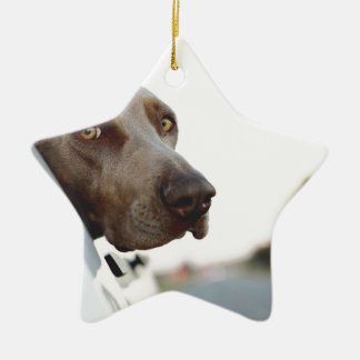 Dog with head out of a car window christmas ornament