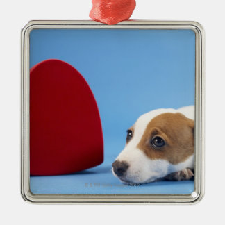 Dog with heart Silver-Colored square decoration