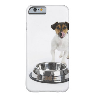 Dog with Large Bowl Barely There iPhone 6 Case