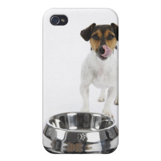 Dog with Large Bowl iPhone 4 Case