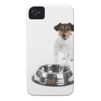 Dog with Large Bowl iPhone 4 Cover