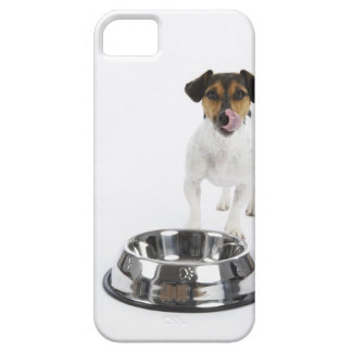 Dog with Large Bowl iPhone 5 Covers