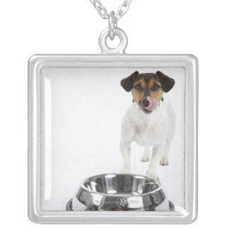 Dog with Large Bowl Silver Plated Necklace