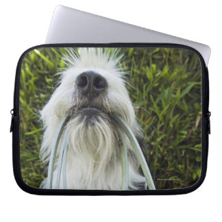 Dog with leash in mouth laptop sleeve