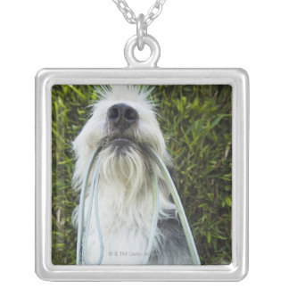 Dog with leash in mouth silver plated necklace