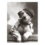 Dog With Pipe and Hat Post Card