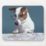Dog with reading glasses studying map mouse mat