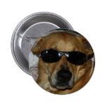 Dog with sunglasses 6 cm round badge