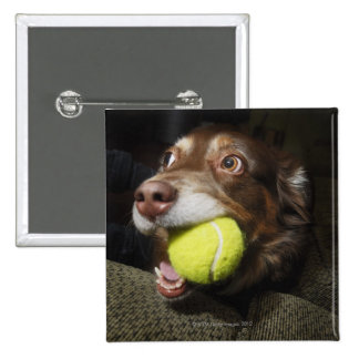 Dog with Tennis Ball 15 Cm Square Badge