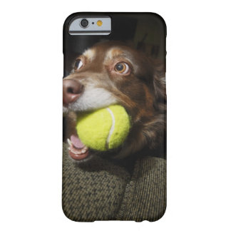 Dog with Tennis Ball Barely There iPhone 6 Case