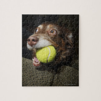 Dog with Tennis Ball Jigsaw Puzzle