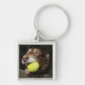 Dog with Tennis Ball Key Ring