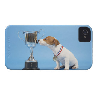 Dog with trophy iPhone 4 cover